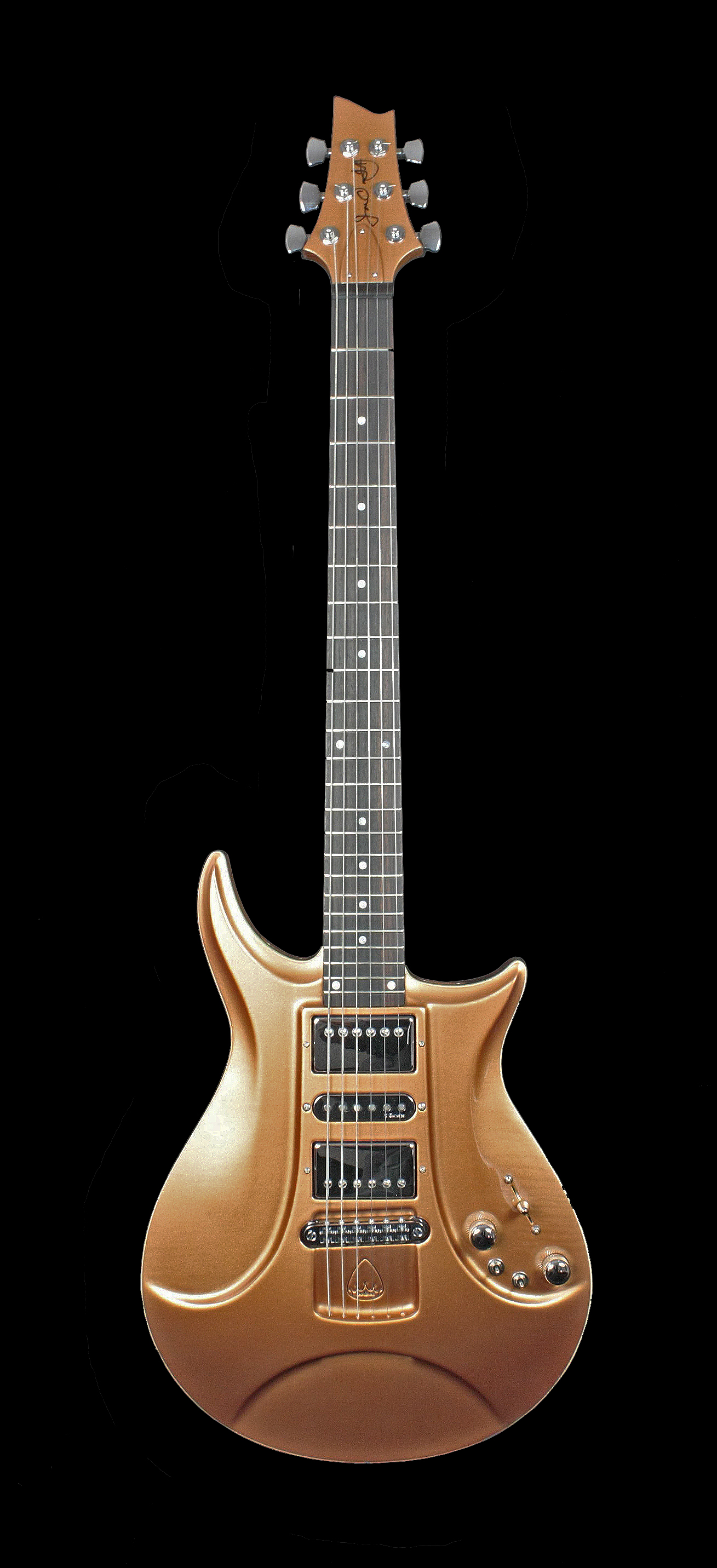 Windsor RS Hollow Body By King Blossom Guitars