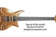 Windsor-RS #0101 Guitar for Sale King Blossom Guitars